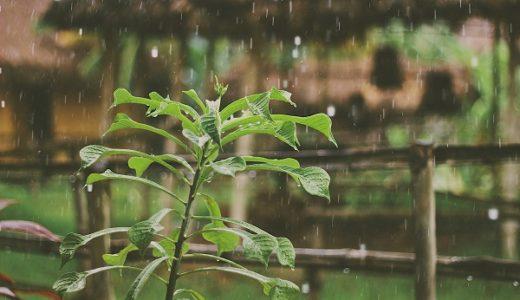 天気が悪いと古傷が痛む3つの理由。自然はコントロールできないという当たり前の事実を認めればストレスが減る!?